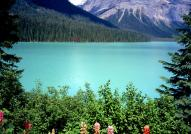 Emerald Lake at Yoho National Park